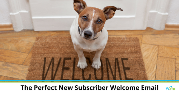 The Perfect New Subscriber Welcome Email